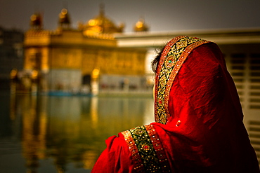 Sikh woman devotee of The Golden Temple of Amritsar, Punjab, India, Asia