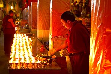 Tibetan Buddhist monks studying Buddhist scripture in Drepung Monastery, Lhasa, Tibet, China, Asia