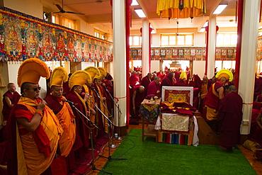 Tibetan Buddhist monks at Losar (Tibetan New Year) in the Dalai Lama Temple, McLeod Ganj, Dharamsala, Himachal Pradesh, India, Asia