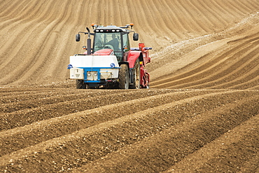 Farmer ploughing and cultivating field for crops near Fridaythorpe, Yorkshire Wolds, East Yorkshire, England, United Kingdom, Europe