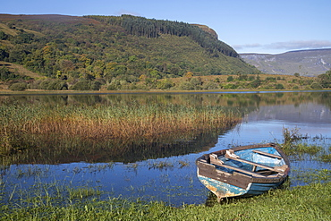 Rowing boat on the shore of Lough Gill, County Sligo, Connacht, Republic of Ireland, Europe