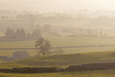 Dry stone walls and fields at Wharfedale from the Dales Way Footpath near Grassington, Wharfedale, Yorkshire Dales, North Yorkshire, Yorkshire, England, United Kingdom, Europe