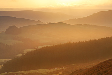 View over Bilsdale West Moor at sunrise towards Scugdale from Carlton Bank, Cleveland Hills, North York Moors, North Yorkshire, Yorkshire, England, United Kingdom, Europe