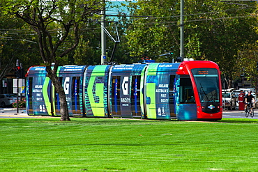 Trams at Victoria Square, Adelaide, South Australia, Australia, Pacific