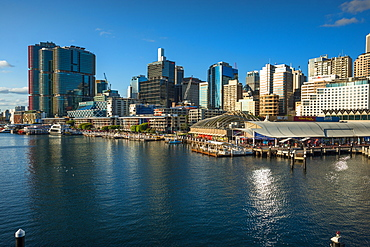 Darling Harbour skyline, Sydney, New South Wales, Australia, Pacific