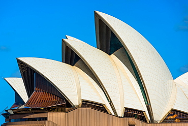 Detail of Sydney Opera House sails, UNESCO World Heritage Site, Sydney, New South Wales, Australia, Pacific