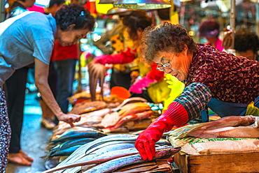 Fish for sale at Jagalchi fish market, Busan, South Korea, Asia