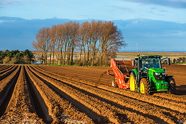 Rural landscape, tractors ploughing and sowing fields in early Spring time at Burnham Overy, Norfolk, East Anglia, England, United Kingdom, Europe
