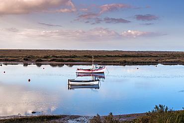 Views from Norfolk Coast path National Trail near Burnham Overy Staithe, Norfolk, East Anglia, England, United Kingdom, Europe