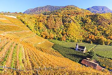 View of St. Valentin church surrounded by autumn colors, Merano, Val Venosta, Alto Adige-Sudtirol, Italy, Europe