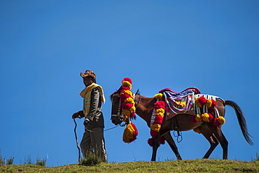A man leads his horse with a colourful red and yellow traditional headdress along the brow of a hill, with blue sky behind them, Ethiopia, Africa
