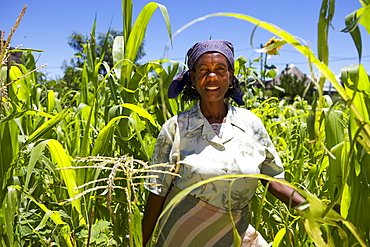 An empowering portrait of a female farmer, Lesotho, Africa