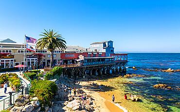 Monterey Bay, Peninsula, Monterey, California, United States of America, North America