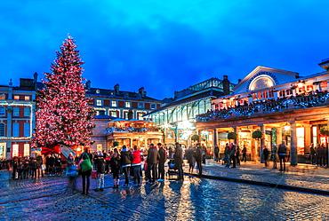 Christmas tree at Covent Garden, London, England, United Kingdom, Europe