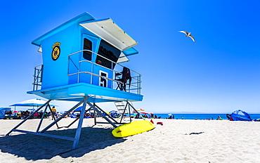 Santa Cruz Beach, Santa Cruz, California, United States of America, North America