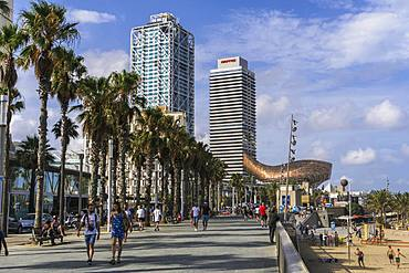 Palm trees and pedestrian zone promenade with modern art and skyscrapers in the background by waterfront, Barcelona Beach, Catalonia, Spain, Europe