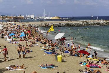 Lifeguard on an observation chair at a crowded Mediterranean sandy beach, Barcelona Beach, Catalonia, Spain, Europe