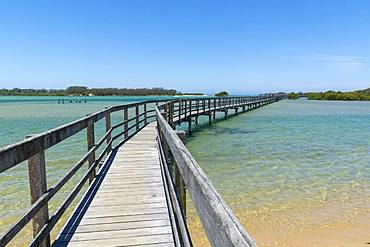 Ocean boardwalk in Urunga on the Coffs Coast stretching along the banks of the Kalang and Bellinger Rivers to the Pacific Ocean, Urunga, New South Wales, Australia, Pacific - 1281-14