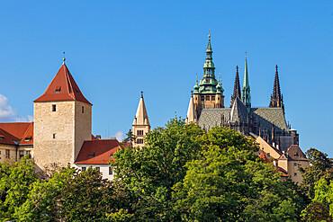 Saint Vitus Cathedral and Prague Castle seen from the Chotek Gardens, Prague, Czech Republic, Europe
