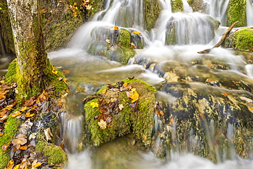 Small cascades at the Upper Lakes in Plitvice National Park, UNESCO World Heritage Site, Croatia, Europe