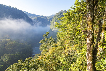 Elevated view from a less known lookout over the Semuc Champey area, Guatemala, Central America