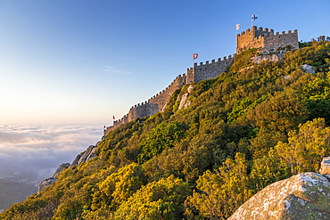 The Moorish Castle seen from a natural lookout, Sintra, Portugal, Europe