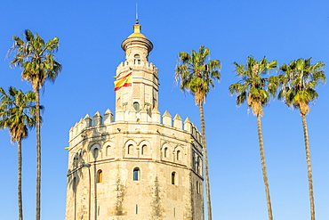 Golden Tower (Torre del Oro), Seville, Andalusia, Spain, Europe