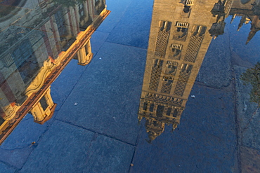 Reflection of the Giralda Bell Tower in a puddle, Seville, Andalusia, Spain, Europe