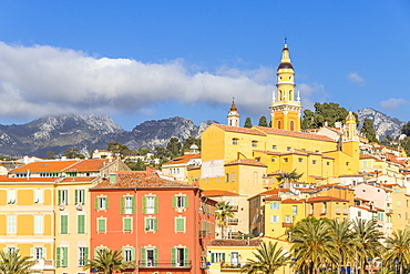 The old town with the Saint-Michel-Archange Basilica, Menton, Alpes Maritimes, Cote d'Azur, French Riviera, Provence, France, Mediterranean, Europe