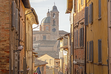 Via Bramante, Urbino, Marche, Italy, Europe