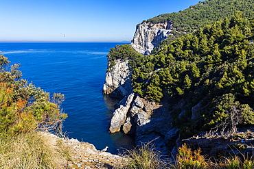 Island of Palmaria, view of the south west coast, Liguria, Italy, Europe