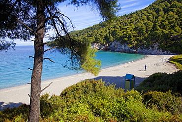 Kastani Beach, Skopelos, Sporades Island group, Greek Islands, Greece, Europe