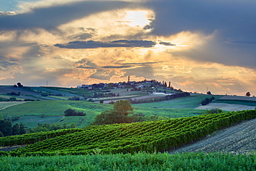 On the Fausto Coppi's roads, the view from the Rampina, white road of the Cycling race La Mitica, from Villaromagnano to Costa Vescovado, Tortona area, Alessandria, Piedmont, Italy, Europe