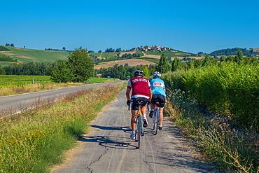 On the Fausto Coppi's roads, the cycling road from Villaromagnano to Castellania, Tortona area, Alessandria, Piedmont, Italy, Europe