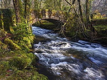 Water flows under Buckland Bridge as it joins the River Dart near Newbridge, Dartmoor National Park, Ashburton, Devon, England, United Kingdom, Europe