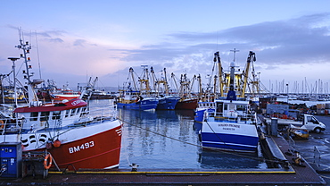 Trawlers moored alongside in the fishing port of Brixham, Devon, England, United Kingdom, Europe