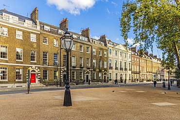 Beautiful Georgian architecture in Bedford Square in Bloomsbury, London, England, United Kingdom, Europe