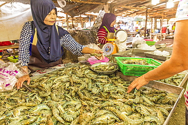 A fresh seafood stall at the local market in Ao Nang, Krabi Province, Thailand, Southeast Asia, Asia