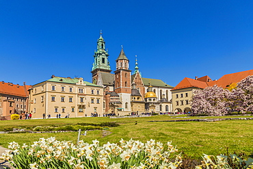 View of Wawel Cathedral at Wawel Royal Castle, UNESCO World Heritage Site, in the medieval old town, in Krakow, Poland, Europe