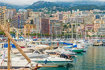 Monaco Port, Port Hercule in Monte Carlo, Monaco, Cote d'Azur, French Riviera, Mediterranean, France, Europe