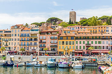 Le Vieux Port harbour in Cannes, Alpes Maritimes, Cote d'Azur, Provence, French Riviera, France, Mediterranean, Europe