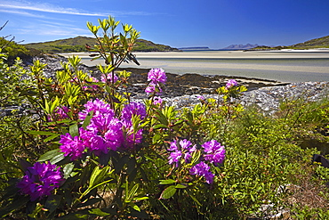 The silver sands of Morar with Eigg and Rhum on the horizon, Highland Region, Scotland, United Kingdom, Europe