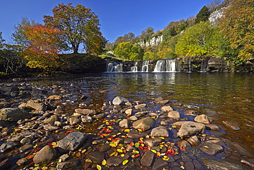 Autumn at Wainwath Falls with Cotterby Scar in the distance, near Keld, Swaledale, Yorkshire Dales, North Yorkshire, England, United Kingdom, Europe
