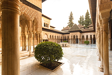 Court of the Lions at the Nasrid Palace, the Alhambra, UNESCO World Heritage Site, Granada, Andalucia, Spain, Europe