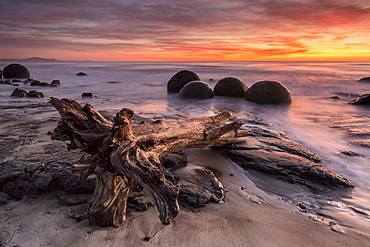 The Moeraki Boulders at Moeraki Beach, Otago, South Island, New Zealand, Pacific