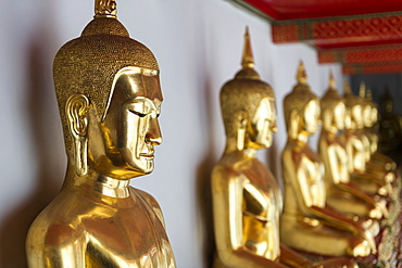 Seated Golden Buddha statues in a row at Wat Pho (Wat Phra Chetuphon) (Temple of the Reclining Buddha), Bangkok, Thailand, Southeast Asia, Asia
