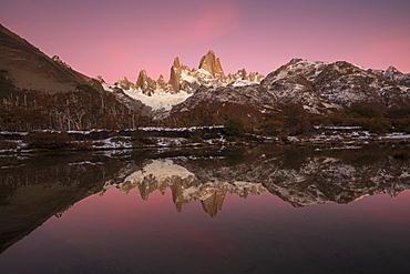 Pre dawn colours with reflection of Mount Fitz Roy, Los Glaciares National Park, UNESCO World Heritage Site, El Chalten, Santa Cruz Province, Patagonia, Argentina, South America