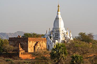 Stupas in afternoon light, Bagan (Pagan), Myanmar (Burma), Asia