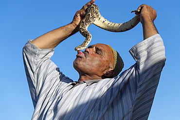Snake charmer kissing snake, Djemaa el Fna, Marrakech, Morocco, North Africa, Africa