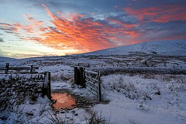 A dramatic winter scene at Wildboarclough, Peak District National Park, Cheshire, England, United Kingdom, Europe